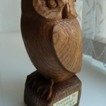 Little Owl oiled up!